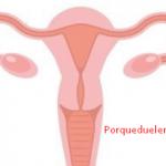 Porque Duelen Mucho Los Ovarios